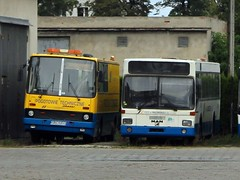 Ikarus 280/A and MAN SL
