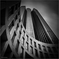 Black&White / Monochrome