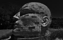 A Big Head
