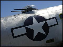 Star bomber 18.3 x 13