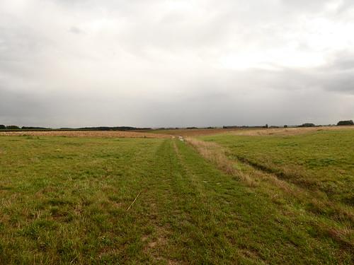 Entre Piétrain et Saint-Jean-Geest