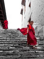 2019 Bhutan
