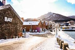 Hakodate January 19