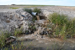 silty water at irrigation drainage