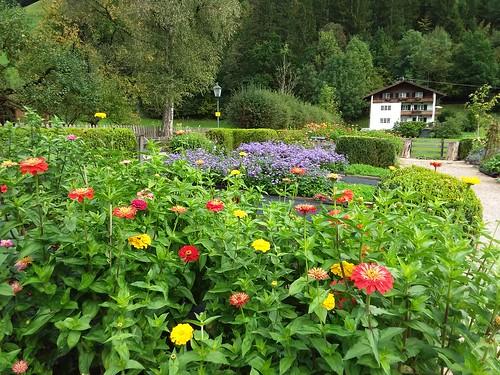 Mixed Garden by Jim