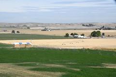 Fletcher Gulch landscape