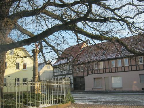 Heringen (Helme): Unter der Friedenseiche auf dem Kirchplatz