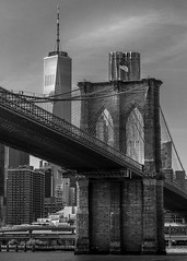 The Brooklyn Bridge (Explored #53)