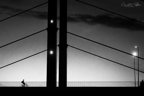 night.cycles