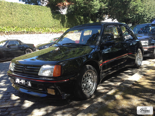 Dimma Peugeot 205 1.6 GTI - Caramulo