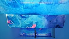 Rosées bleues de Charlotte Denamur (Institut d'Art Contemporain, Villeurbanne)