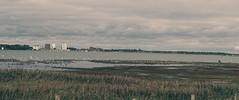 Blick auf den Hafen Burgstaaken - 3. Oktober 2019 - Fehmarn - Schleswig-Holstein - Deutschland