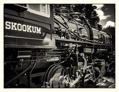 Skookum Running Gear No 1