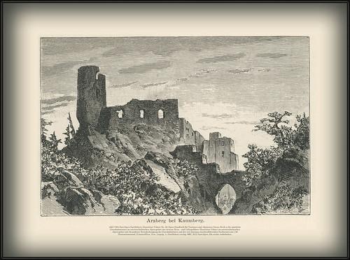 s023 7304 HartAlpen Ruine Araberg bei Kaumberg jahr 1885.