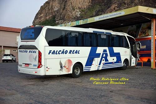 FALCAO REAL 3000 - CPO.FORMOSO x SALVADOR