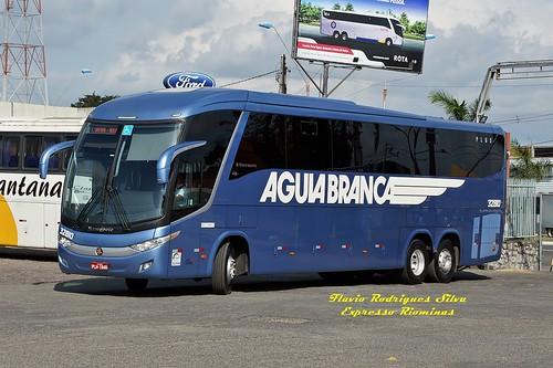AGUIA BRANCA 32810 - FEIRA DE SANTANA x ARACAJU