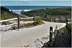 Beaches & Seashore