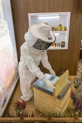 Symbolbild Honigzubereitung: Imker im Schutzanzug am Bienenstock bei der Honigernte