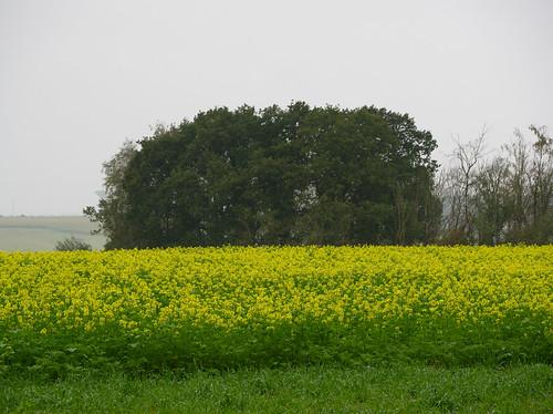 Berzée-Pry