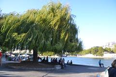Le long de la Seine