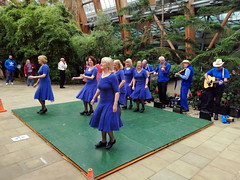 5.10.19 Sheffield Step Dance 44.jpg