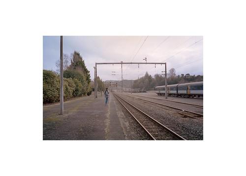 Train Tracks Spotted in Taumarunui, NZ. [Olympus MJU II, Portra 400]