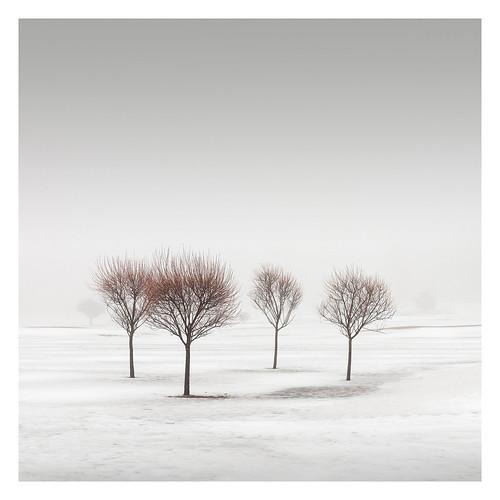 Winter Poetry IV