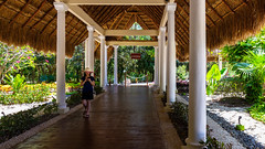 Week 17 - Balance - Accidental Renaissance - All Inclusive Resort