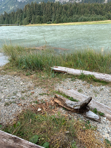 2019 09 01 - Skagway and Haines (325)