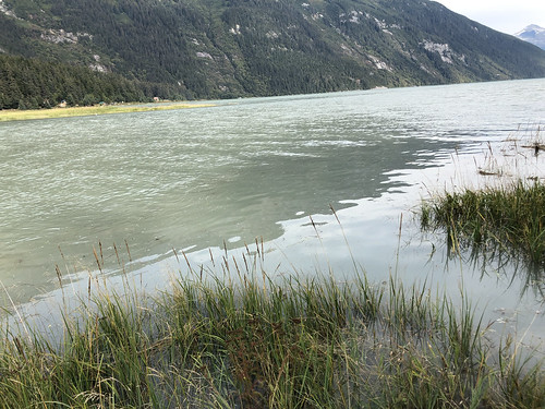 2019 09 01 - Skagway and Haines (531)