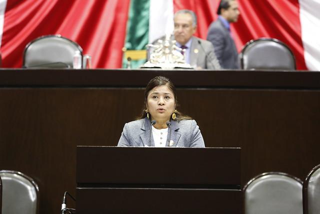 22/11/2018 Intervención en tribuna de la Dip. Rosalinda Domínguez Flores