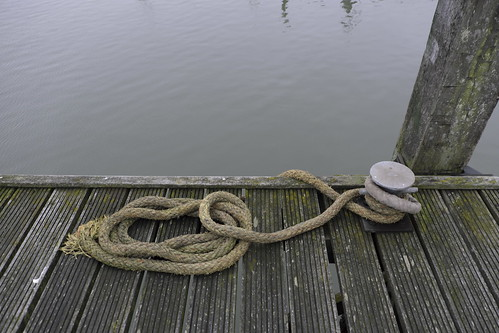 Snake At The Water?