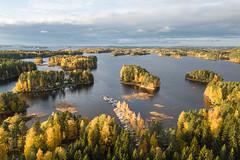 Maisema Neulaniemestä Pohjois-Kallavedelle 2