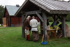 Viking House Storyteller and Games-4