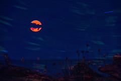 Torn Apart Moon