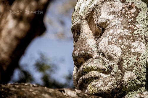 Close Up of Lichen Covered Stone Face, Angkor Park, Siem Reap