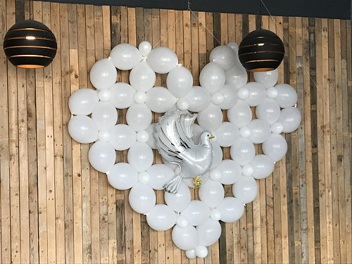 Ballonnenwand Pinksteren Watertuin Spijkenisse