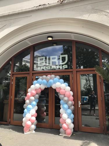 Ballonboog 5m Bird Hofbogen Rotterdam