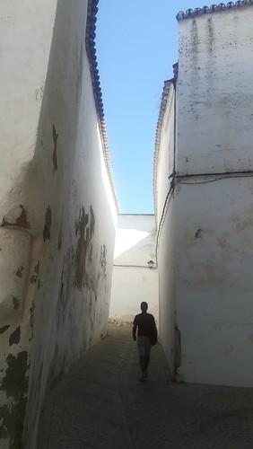 Andalucía vertical