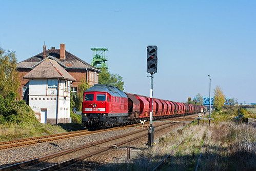 233 288 am 07.10.19 in Ilberstedt