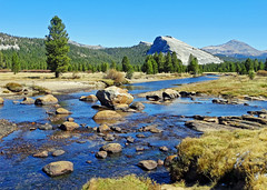 Tuolumne River and Meadow, Yosemite 10-19