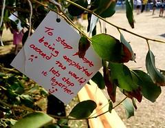 Message on Wishing Tree 2