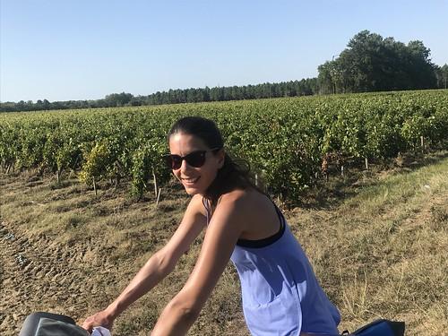 Au milieu des vignobles