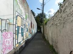 Montreuil, murs à pèches