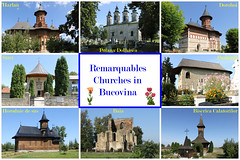 Remarquables Churches in Bucovina