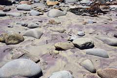 Pfeiffer Beach_2019 07 10_0820