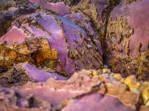 Purplish Rocks with Strange Encrustation by the Sea (#2)