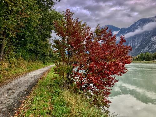 Autumn by the river Inn in Kiefersfelden, Bavaria, Germany