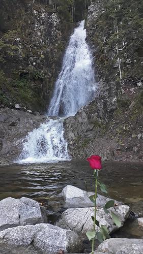 le retour de l'eau aux cascades