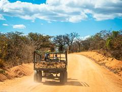 2019 Ruaha National Park